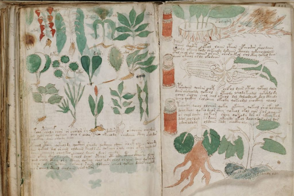 Páginas do Manuscrito Voynich